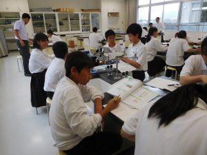 理科授業:グループで考察
