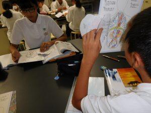 自作人体図鑑を見ながら勉強