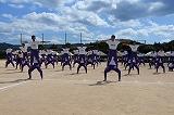 男子組立体操