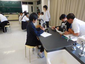 1年生理科:結晶の観察と溶解度の考察